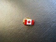 A Canadian girl left a tiny pretty pin.
